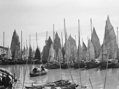 Harbor of Chinese Boats