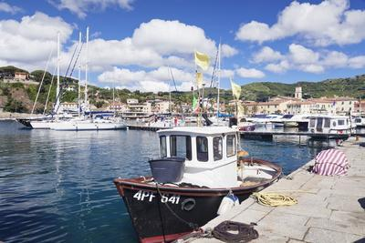 https://imgc.allpostersimages.com/img/posters/harbour-with-fishing-boats-porto-azzuro-island-of-elba_u-L-PWFQR20.jpg?p=0