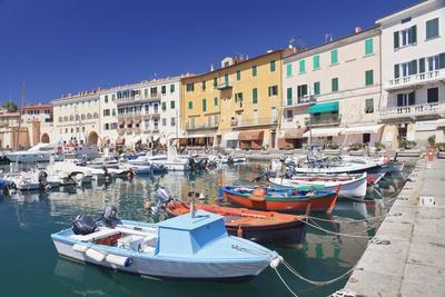 https://imgc.allpostersimages.com/img/posters/harbour-with-fishing-boats-portoferraio-island-of-elba_u-L-PWFS6C0.jpg?p=0