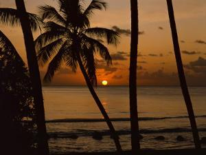 Beach at Sunset, Barbados, West Indies, Caribbean, Central America by Harding Robert