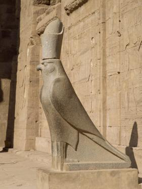 Statue of Horus, at the Temple of Horus, Edfu, Egypt, North Africa, Africa by Harding Robert