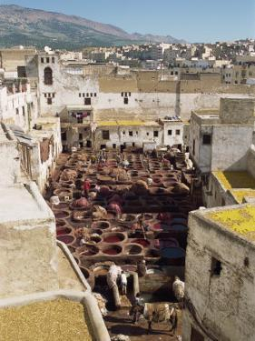 Tanneries, Fez, Morocco, North Africa, Africa by Harding Robert