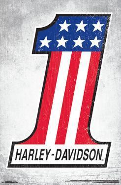 HARLEY-DAVIDSON - 1