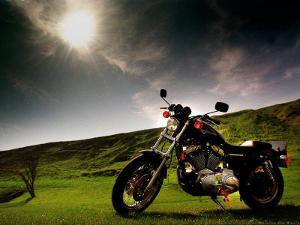 Harley Davidson Motorbike Sitting in Field, June 1998