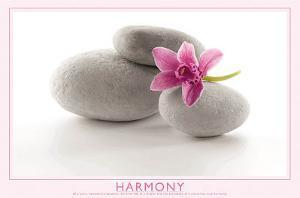 Harmony (Flower & Stones) Art Poster Print