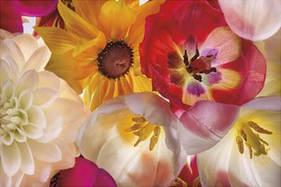 When Flowers Talk