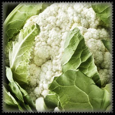 Caulliflower Veggy Green