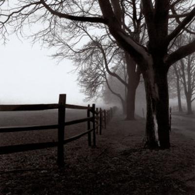 Corner Fence by Harold Silverman