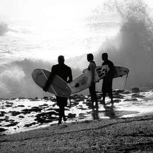 Surfers by Harold Silverman
