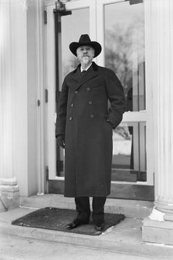 Buffalo Bill Cody, c.1915 by Harris & Ewing