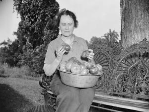 Director of the Mint Nellie Tayloe Ross relaxes on her Maryland farm, 1938 by Harris & Ewing