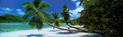 Mahe, Seychelles by Harris Granville