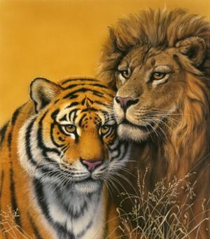 Lion and Tiger by Harro Maass