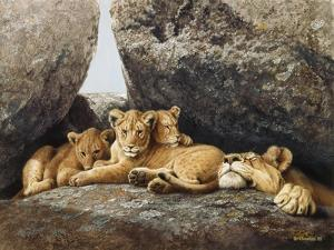 Lioness with Cubs by Harro Maass