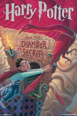 Harry Potter And The Chamber Of Secrets Stone- Book Art Cover