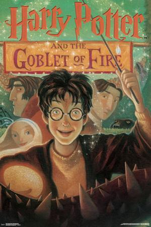 Harry Potter And The Goblet Of Fire- Book Art Cover