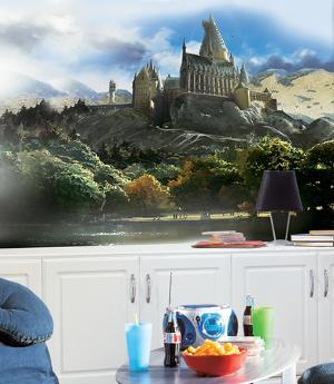 Harry Potter Chair Rail Prepasted Mural