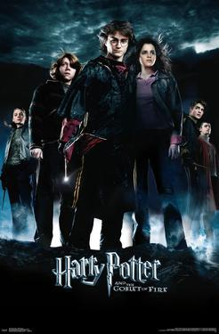HARRY POTTER - GOBLET GROUP
