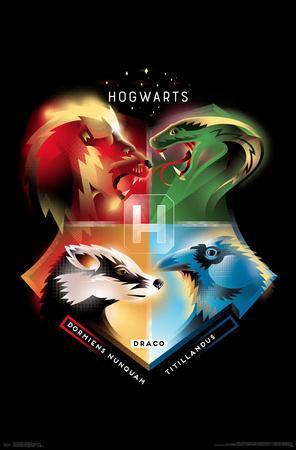 https://imgc.allpostersimages.com/img/posters/harry-potter-hogwarts-19_u-L-F9HNJQ0.jpg?artPerspective=n