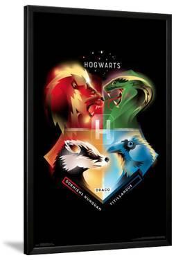 HARRY POTTER - HOGWARTS 19