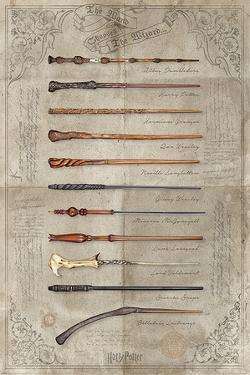 HARRY POTTER - THE WAND CHOOSES THE WIZARD