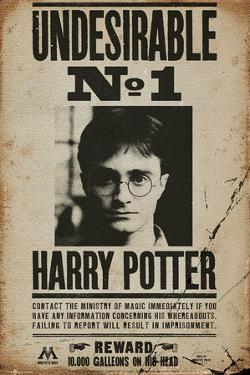 Affordable Harry Potter Posters for sale at AllPosters.com