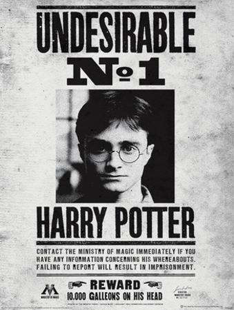 Harry Potter (Undesirable No1) Movie Poster
