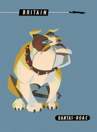 Britain, United Kingdom - English British Bulldog by Harry Rogers