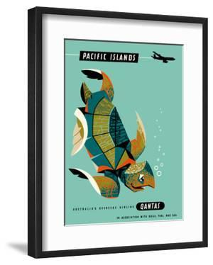 Pacific Islands - Qantas Airways - Green Sea Turtle by Harry Rogers