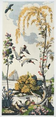 Magnum Opus: Canvasbacks, Pub. 1933 (Colour Litho) by Harry Wearne