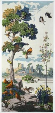 Magnum Opus: Capercailzie, Pub. 1933 (Colour Litho) by Harry Wearne