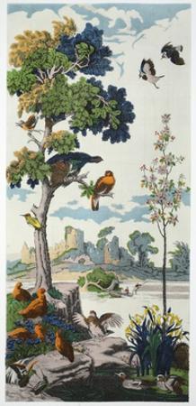 Magnum Opus: Capercailzie, Pub. 1933 (Colour Litho)