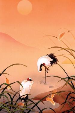 Birds by Haruyo Morita