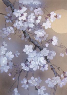 Yoi 12974 Crop 1 by Haruyo Morita