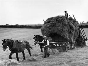 Harvest Horse and Cart