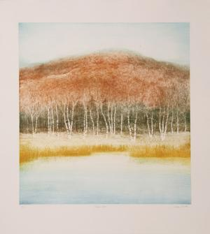 Birch Grove by Harvey Kidder