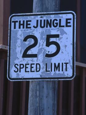 The Jungle 25 Mph Street Sign by Harvey Schwartz