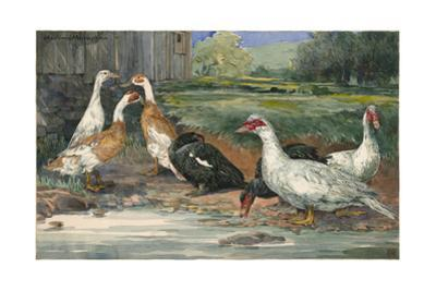 A Painting of Several Species of Runner Ducks and Muscovy Ducks by Hashime Murayama