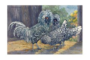 A View of Three Bearded Silver Polish Chickens by Hashime Murayama