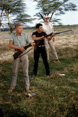 HATARI !, 1962 directed by HOWARD HAWKS Hardy Kruger, Gerard Blain and John Wayne (photo)