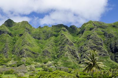 https://imgc.allpostersimages.com/img/posters/hau-ula-forest-reserve-koolau-mountain-rage-oahu-hawaii-united-states-of-america-pacific_u-L-PWFKNV0.jpg?p=0