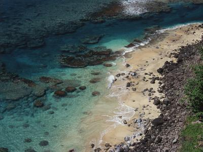 https://imgc.allpostersimages.com/img/posters/hawaii-kauai-haena-state-park-coral-reef-near-kee-beach_u-L-PU3NV70.jpg?artPerspective=n