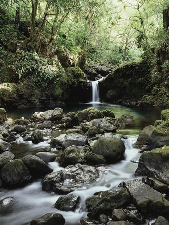https://imgc.allpostersimages.com/img/posters/hawaii-maui-a-waterfall-flows-into-blue-pool-from-the-rainforest_u-L-PXRRJK0.jpg?p=0