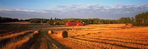 Hay Bales in a Field, Flen, Sodermanland County, Sweden