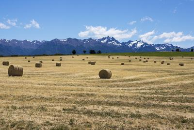 https://imgc.allpostersimages.com/img/posters/hay-field-in-the-landscape-patagonia-argentina_u-L-PWFG1V0.jpg?p=0