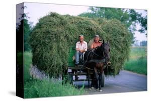 Hay transport, Great Hungarian Plain, Hungary
