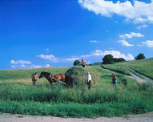 Haymaking near Trakai, Lithuania, Baltic States