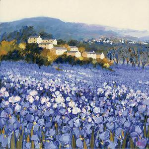 Champs D'Iris, Provence by Hazel Barker