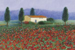 Montefiorale, Tuscany by Hazel Barker