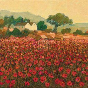 Poppy Field near Aix-En-Provence by Hazel Barker
